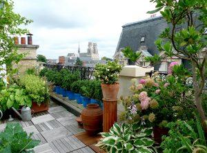 Amenagez un magnifique jardin de ville